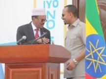 Maxad Ka Ogtahay wadhadlada Somalililand iyo Somaliya, Xog Muhiima,